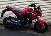 NEW GROM